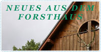 forsthaus.blogspot.com